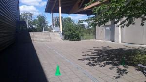 Udesøget fra prøven i Rødovre. Det ene sad bag bevoksningen ved hegnet. Det andet ud under kanten ved væggen på betontrappen.